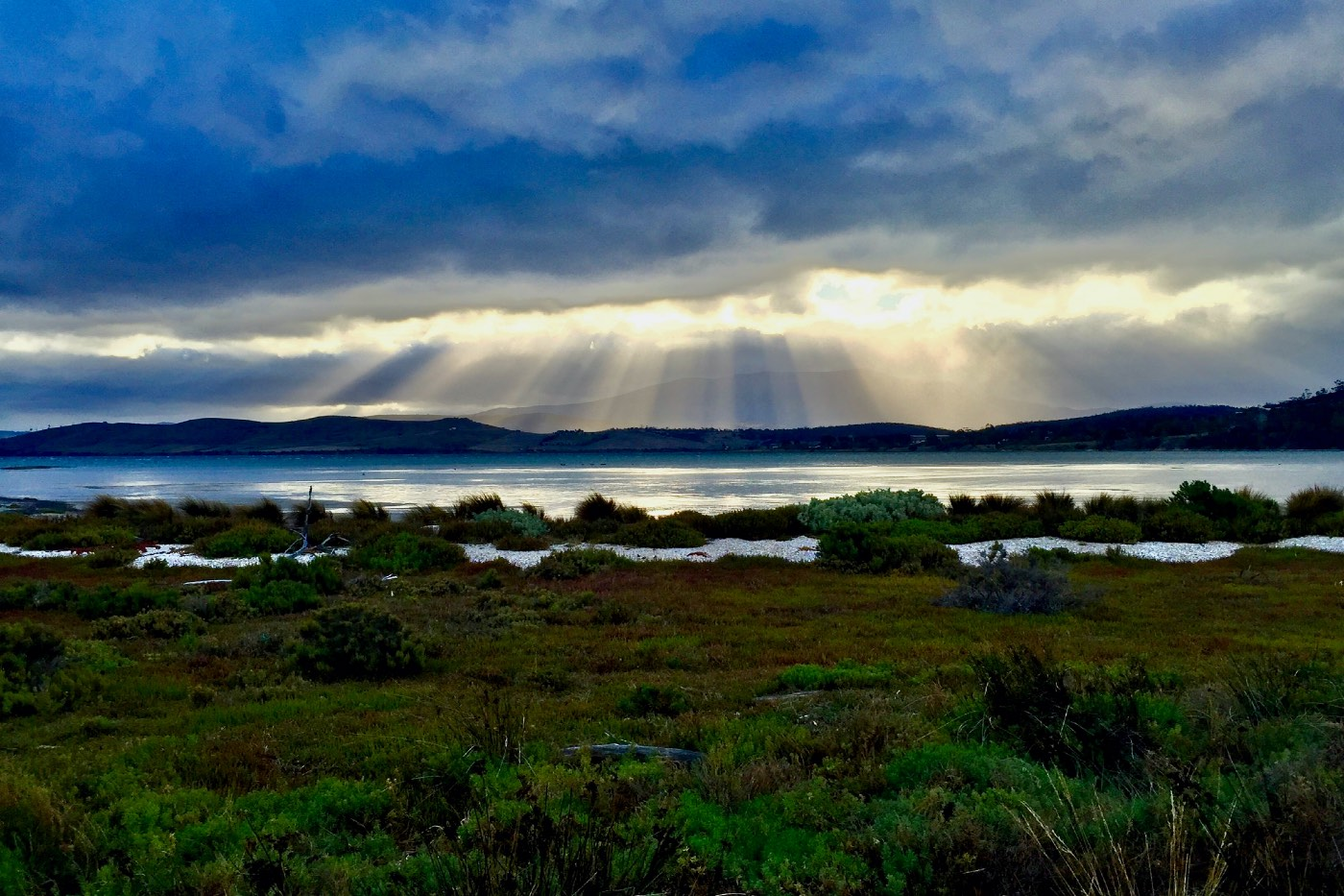 TASMANIA AUSTRALIA ROAD TRIP SCENERY